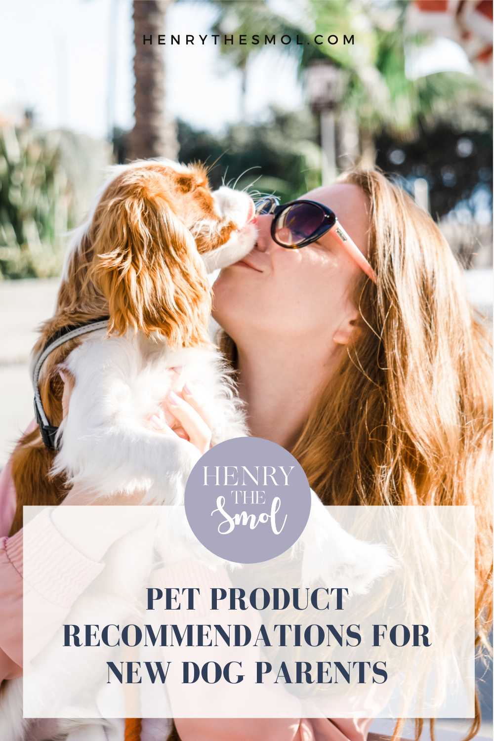 Great First Pet Products for Your New Dog!