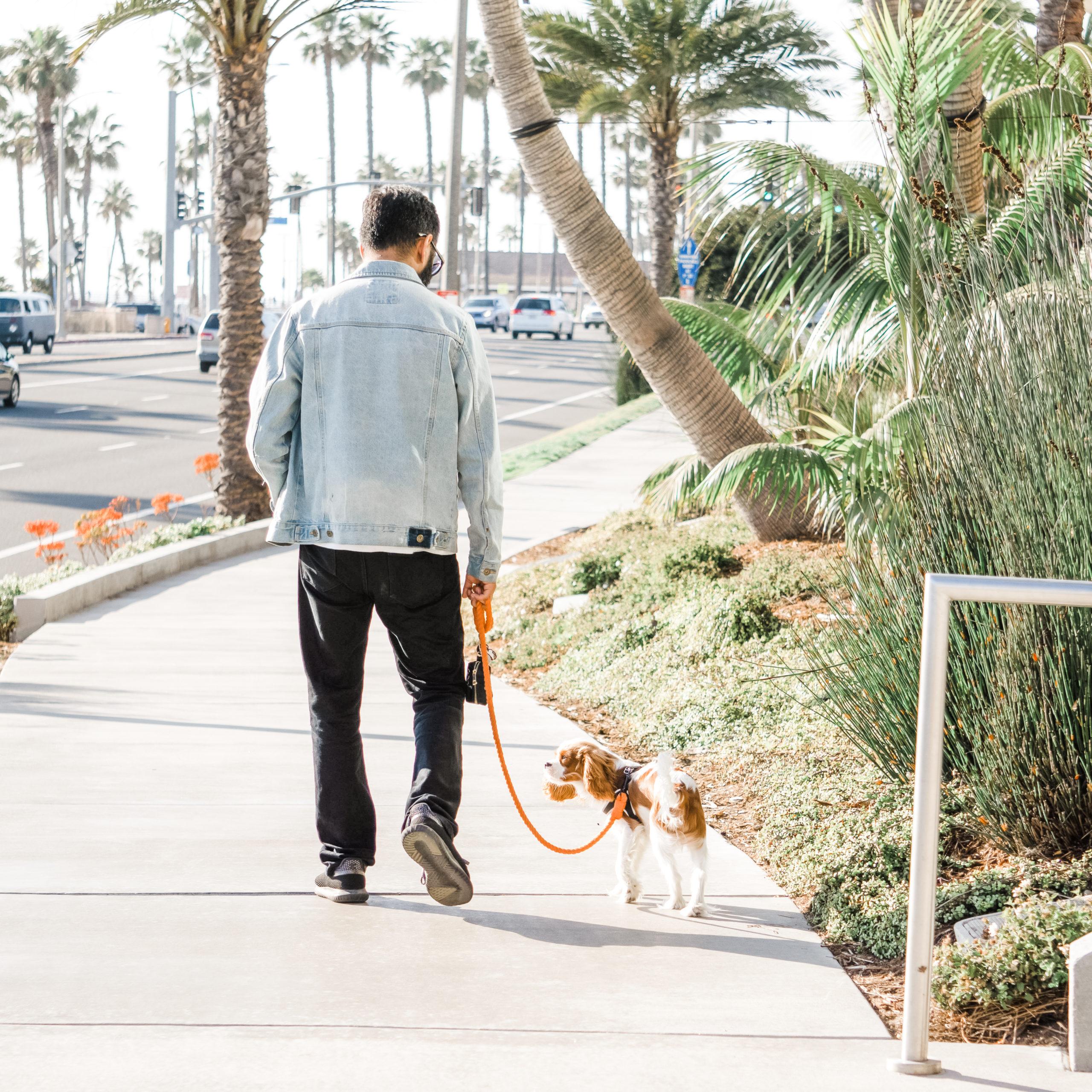 city walk essentials