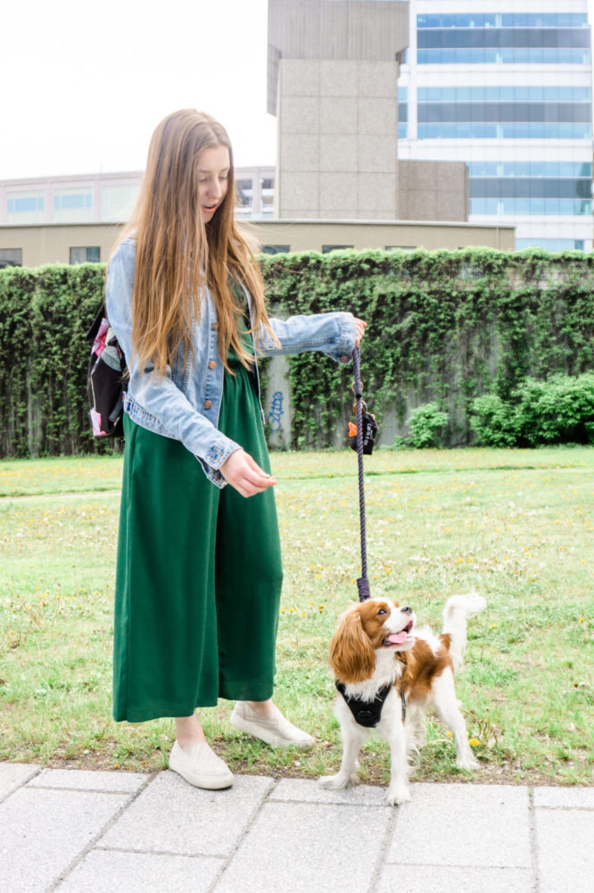 Woman walking her dog in the city