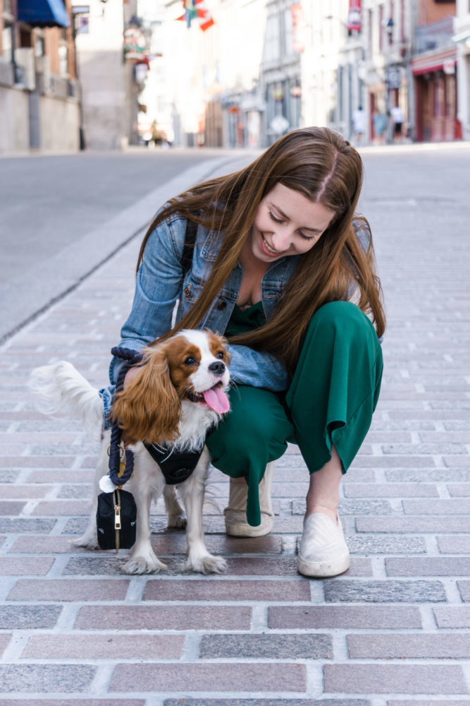 4 signs you're ready to be a dog parent