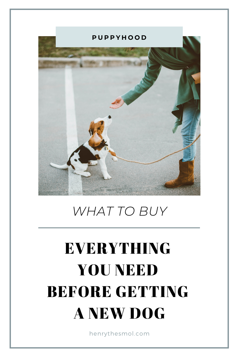 Preparing for Puppy: What You Need To Welcome A Dog