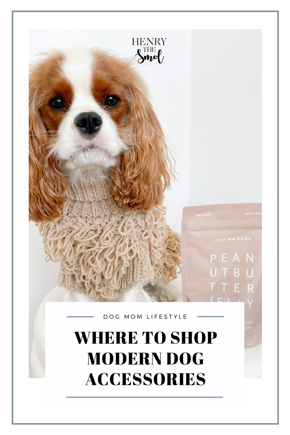The Best Dog Brands for Stylish Dog Moms