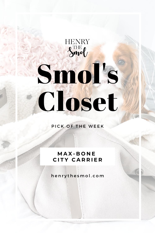 Smol\'s Closet: Max-Bone City Carrier