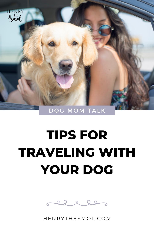 Dog Mom Talk: Training & Traveling with Nicole Ellis