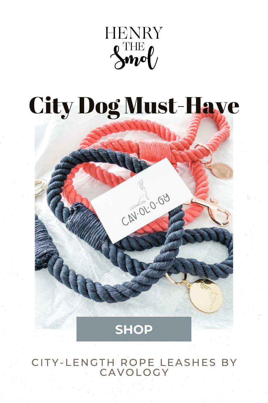 Dog Brands I Love