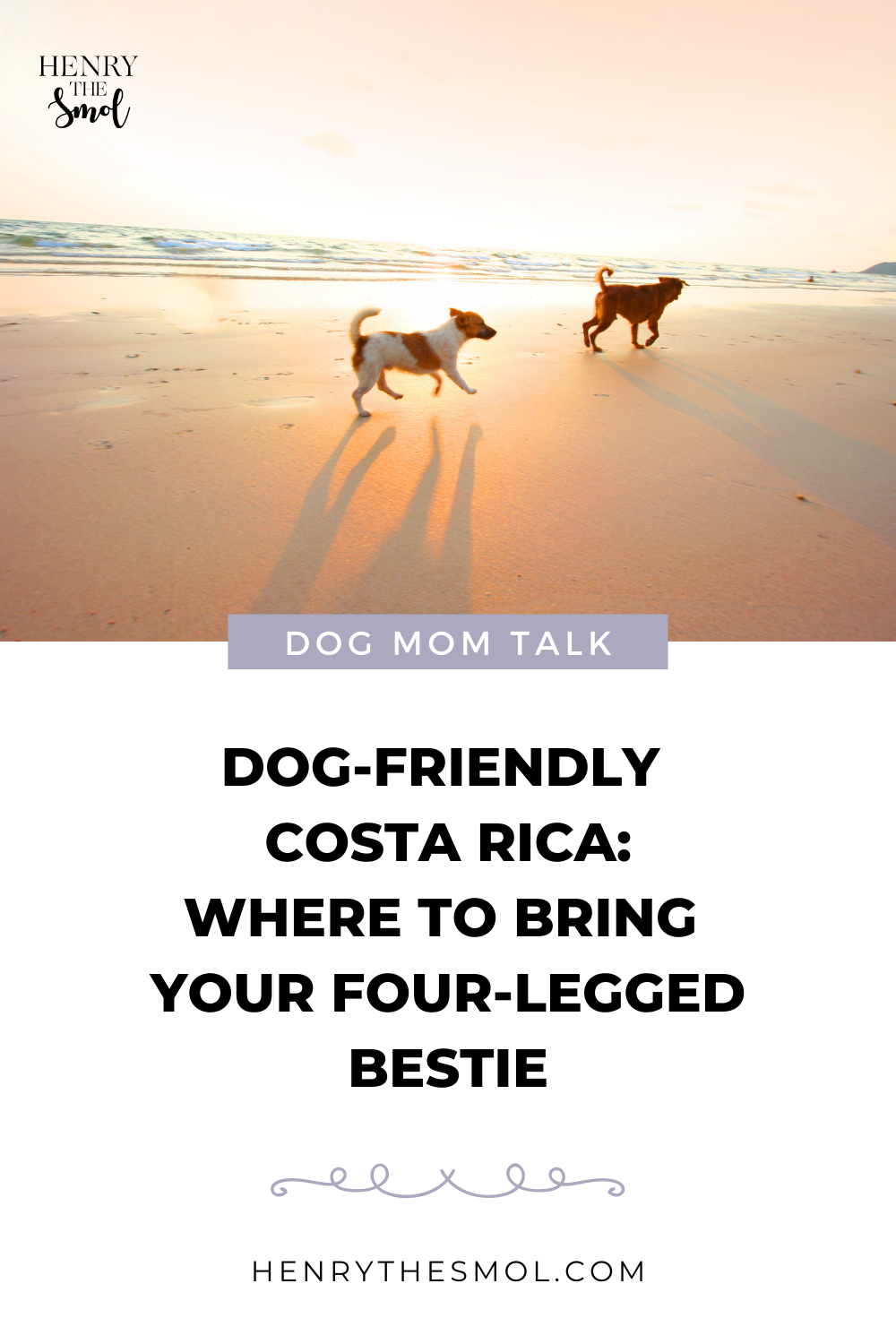 Dog Mom Talk: Dog-Friendly Costa Rica with Ana