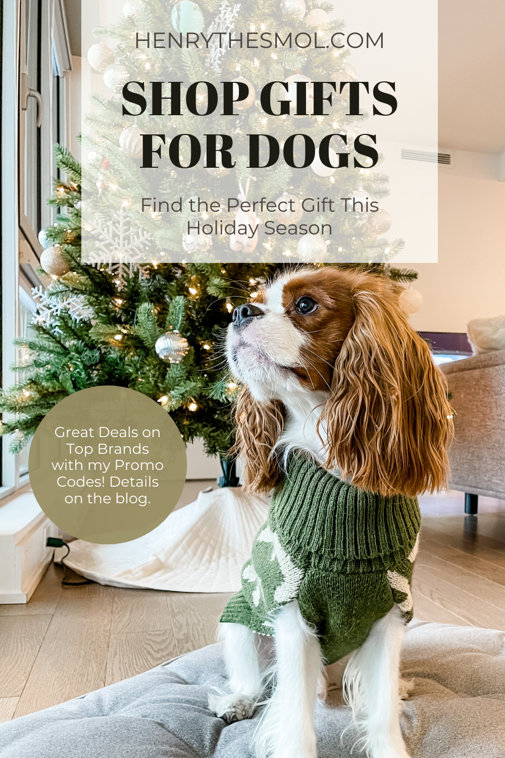Gift Guide: Must-Haves For Any Dog Lover