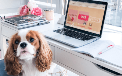 The Pet Summit: Our Virtual Pet Conference Experience