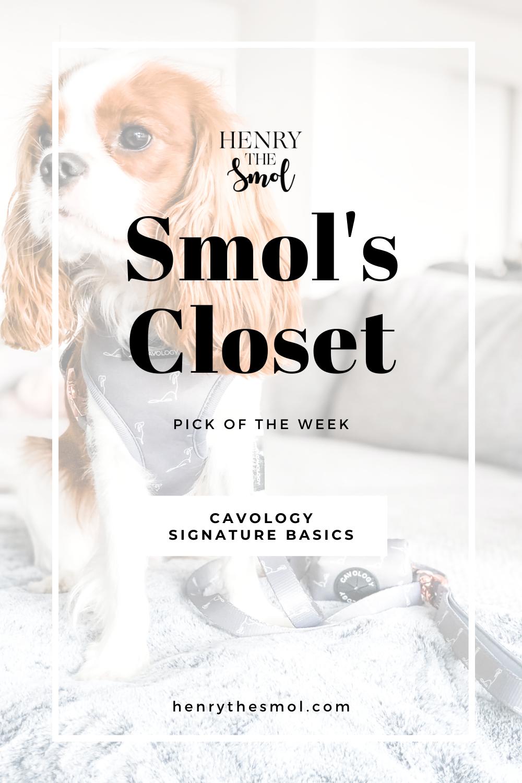 Smol\'s Closet: Cavology Signature Basics