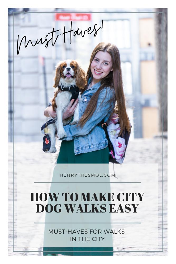 City Dog Walks