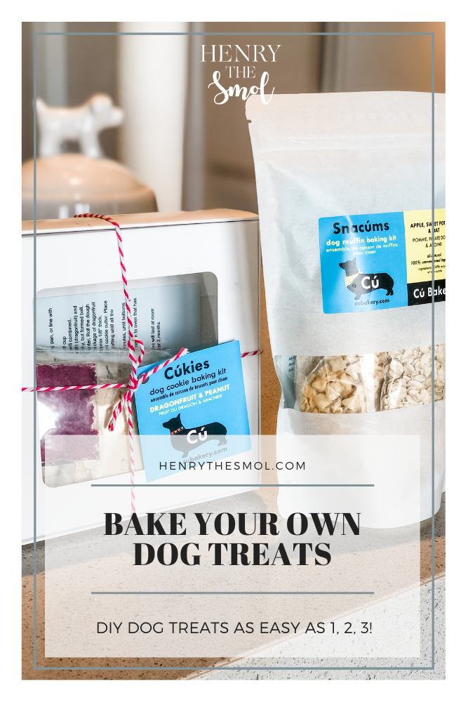 Baking for Your Dog with Cú Bakery
