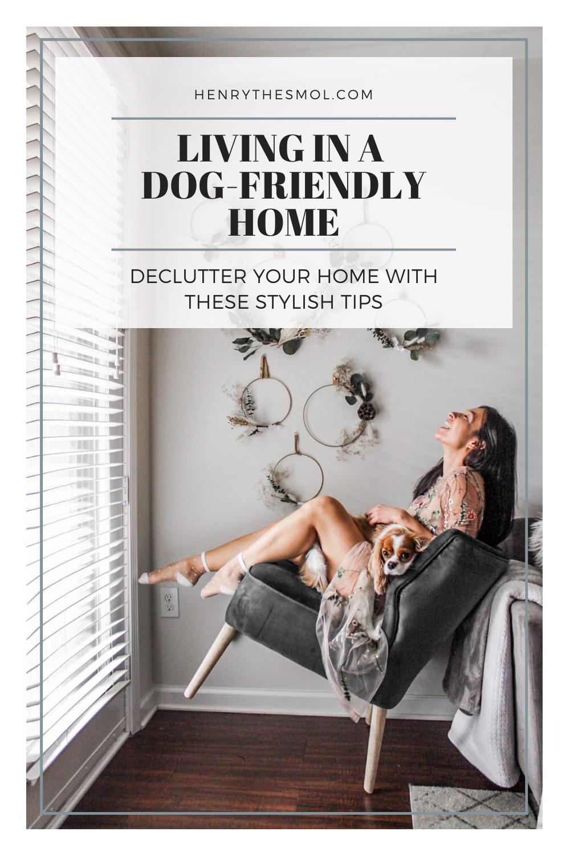 dog-friendly home decor