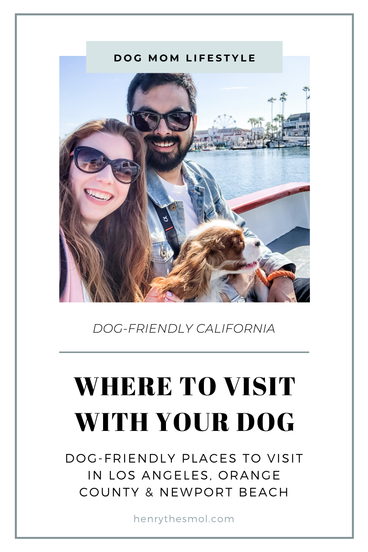 Dog-Friendly California: Orange County & Los Angeles