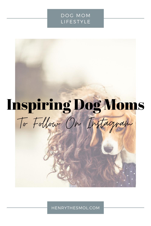 Inspiring Dog Moms To Follow