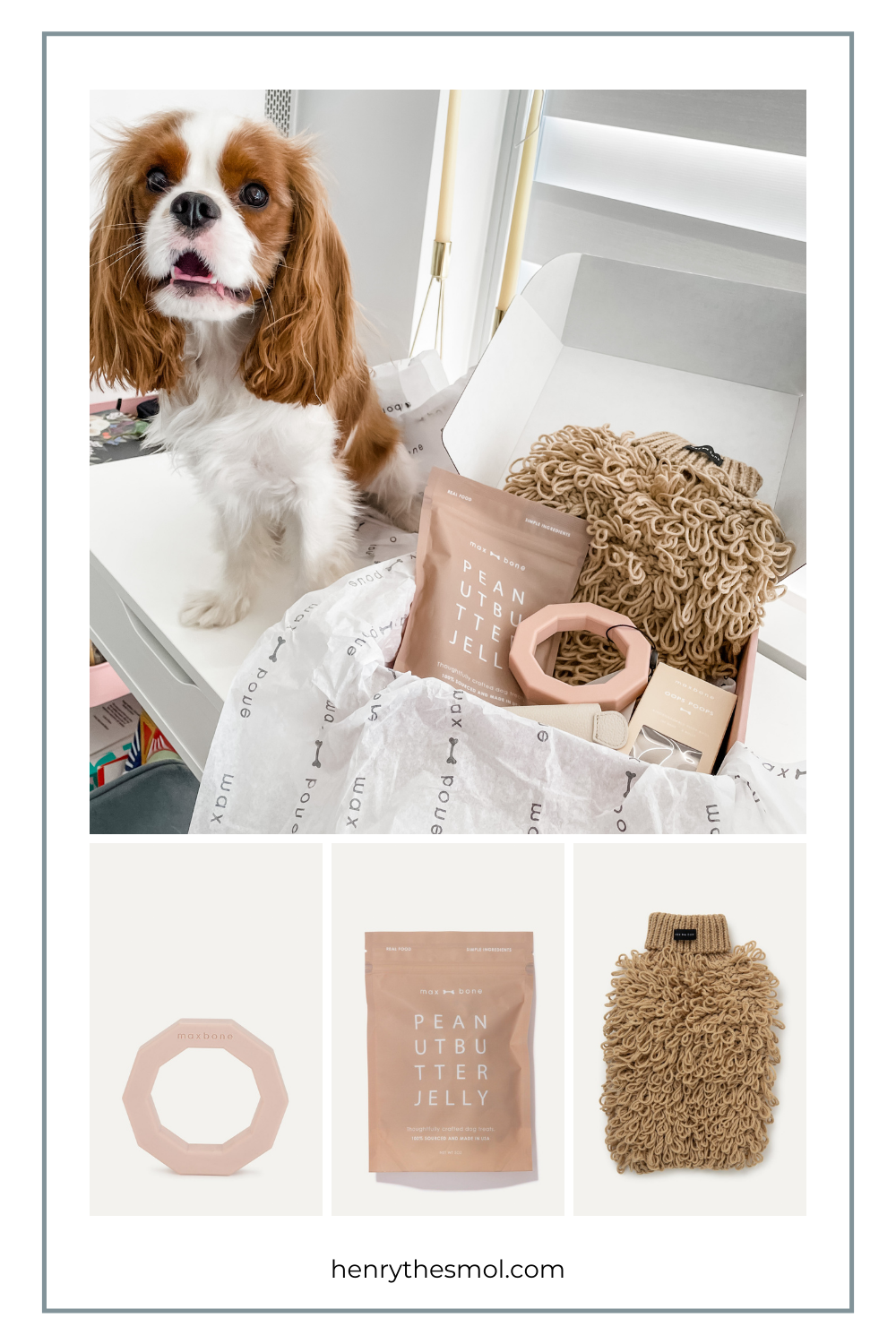 Spring Must-Haves For Stylish Dogs & Dog Moms