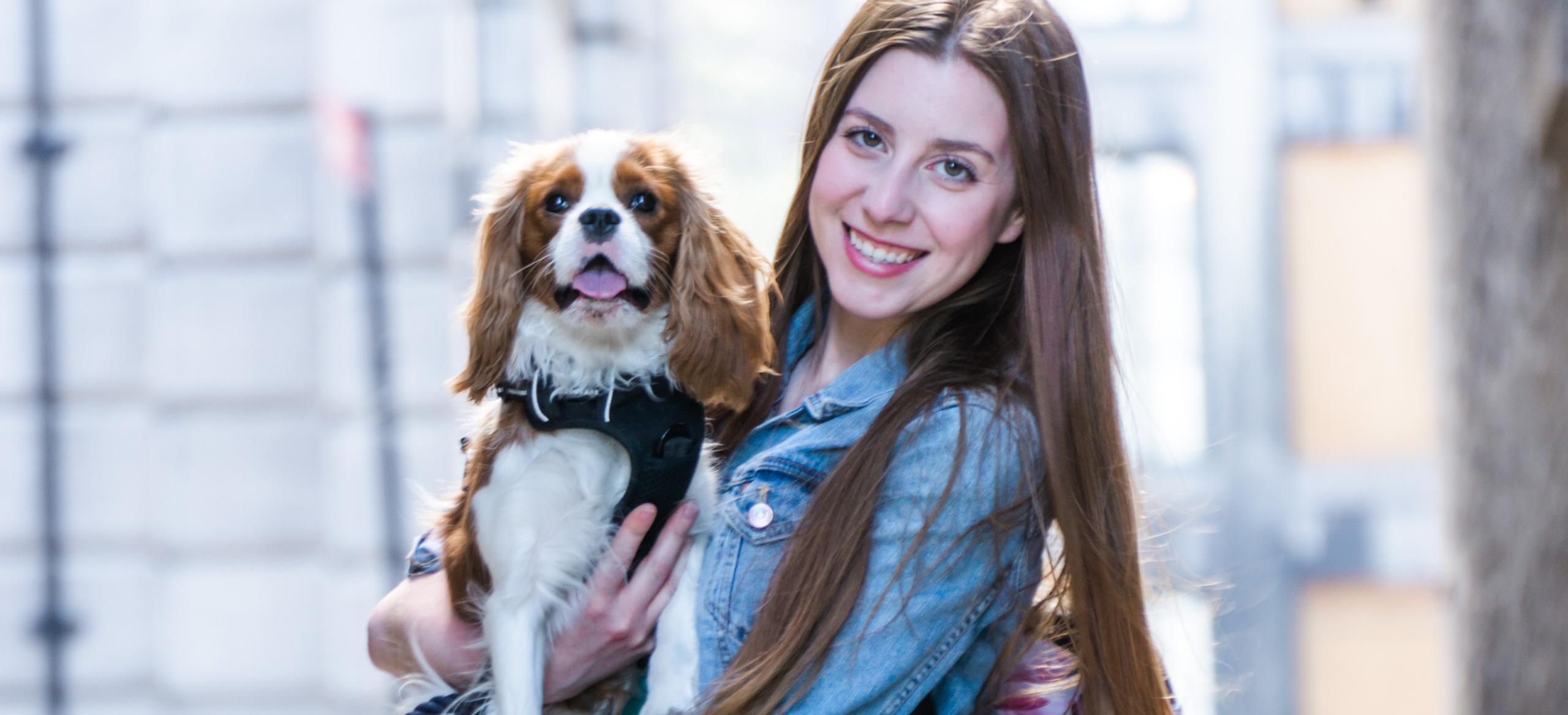 Henry The Smol | Pet Lifestyle Blog | City Dog Living