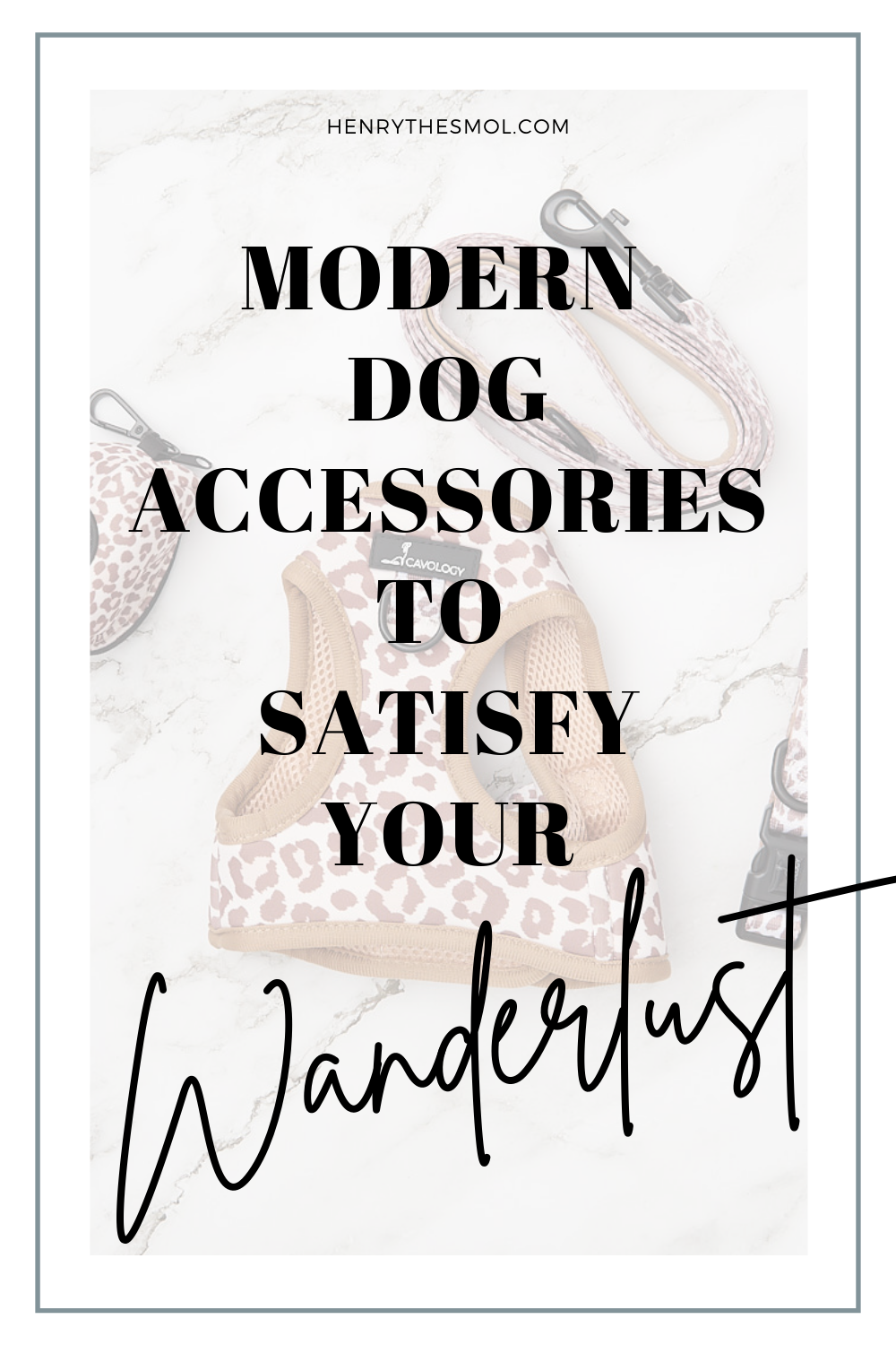 Travel-Inspired Dog Accessories To Satisfy Your Wanderlust