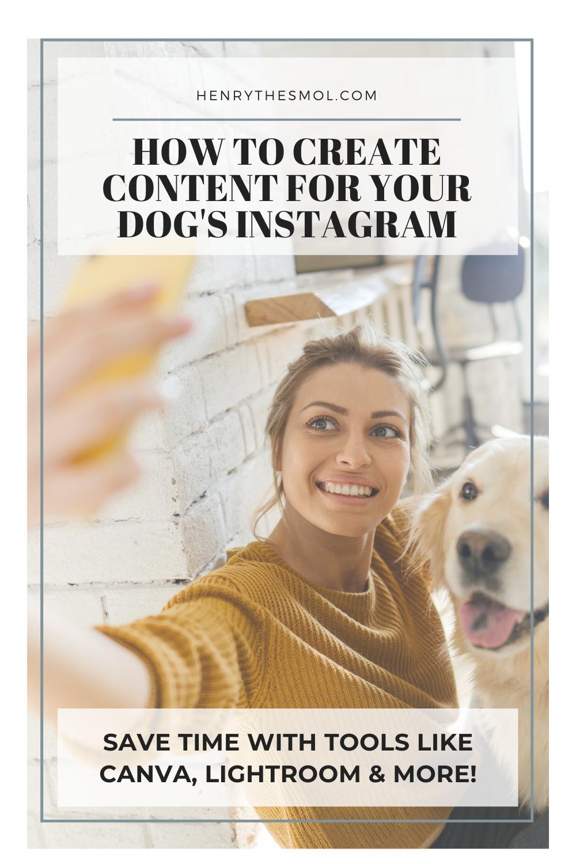 5 Time-Saving Social Media Tools Dog Momagers Need