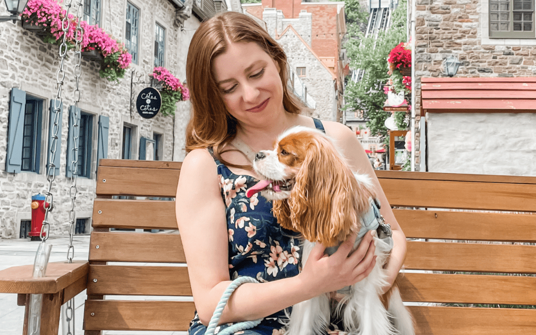 Dog-Friendly Quebec City: Our Dog's First Road Trip