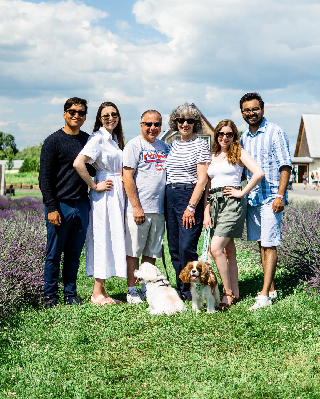 dog-friendly lavender fields