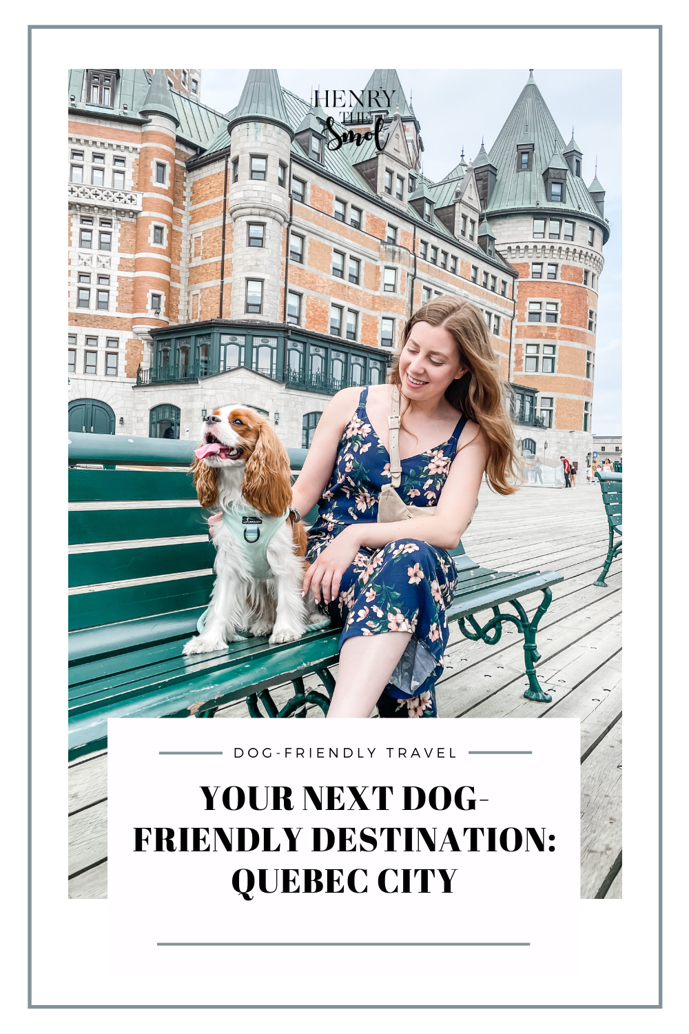 Dog-Friendly Quebec City: Our Dog\'s First Road Trip